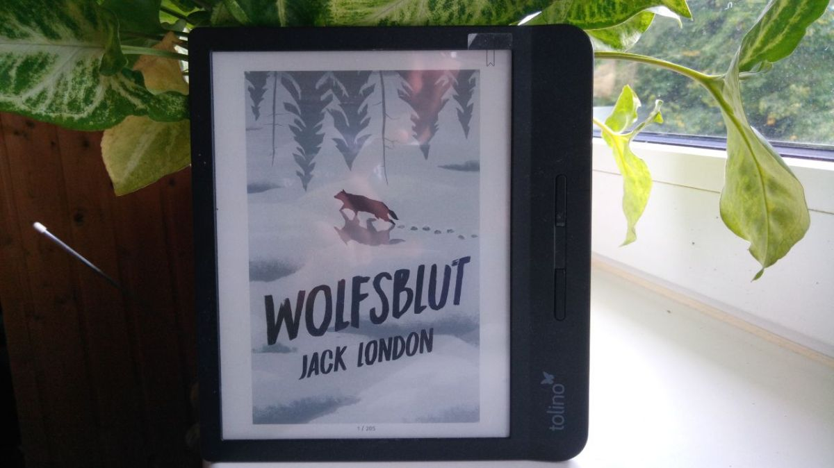 Rezension – Wolfsblut von Jack London
